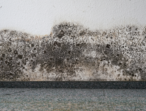 NIHE Claims: Signs of Defective Cavity Wall Insulation and Right to Claim